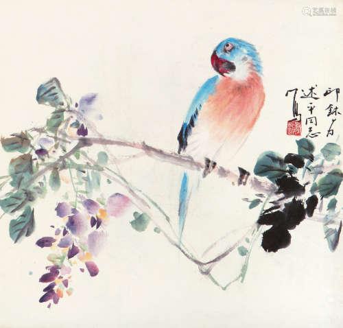 萧 朗(1917-2010) 鹦鹉 纸本设色 镜心