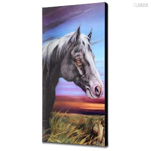The Old Fence Limited Edition Giclee on Canvas by