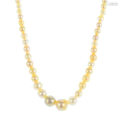 A graduated natural pearl single-strand necklace.
