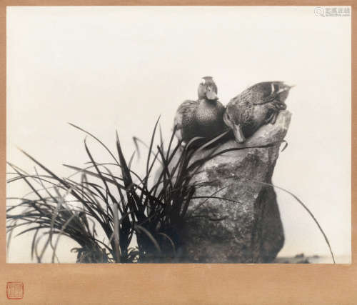 郎静山(1892~1995) 摄影《寒鸦》 镜框