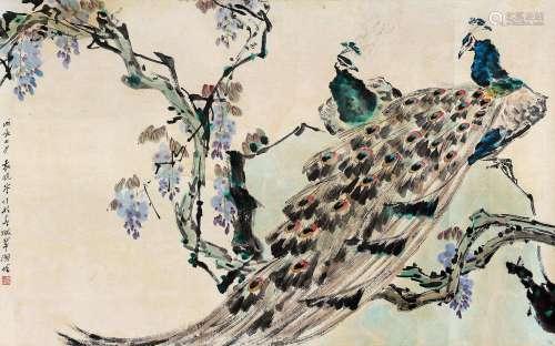 袁晓岑(1915~2008) 戊辰(1988)年作 孔雀 镜片 设色纸本