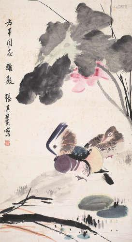张其翼(1915-1968) 荷花鸳鸯 纸本设色 立轴