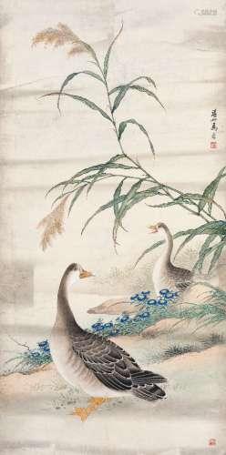 马晋(1900~1970) 芦雁图 镜心 设色纸本