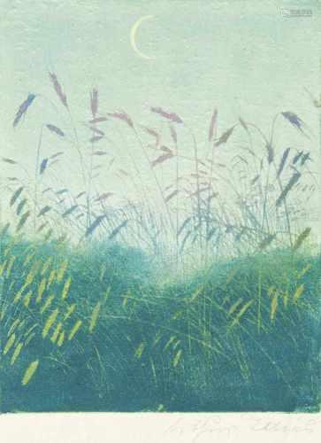 Arthur Illies(Hamburg 1870 - Lüneburg 1952)Vier BlumenmotiveRadierungen, 12 bis 35,5 x 14 bis 25,5