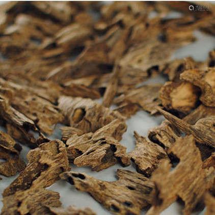越南芽庄虫漏沉香材品香料10克