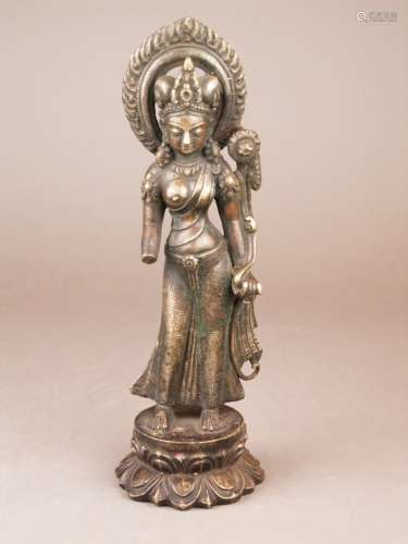 Buddhakopf - wohl Thailand, Bronze, braun patiniert, vollplastischer Kopf Buddhas mit<br />Punktlocken und Ushnisha, lange Ohrläppchen durchbrochen gearbeitet, Altersspuren, H.ca.12cm